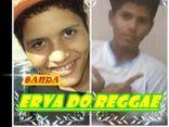 Banda Erva do Reggae