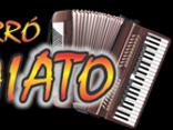 Forró Gaiato (OFICIAL)