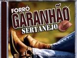 Forro Garanhão Sertanejo