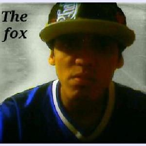 Bruno Duarte Fox