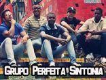 Grupo Perfeita Sintonia